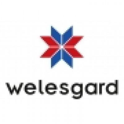 WG-Велефорс Цинк (WG-Weleforce Zinc) низкие цены, короткие сроки!